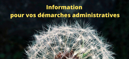 Vos documents administratifs en priorité en ligne